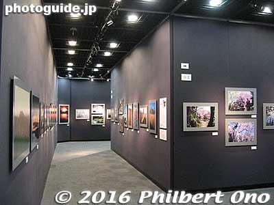 Canon Gallery S